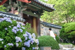 慶州 佛国寺にて